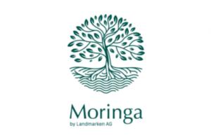 impactpartner_moringa_C2C NGO Website